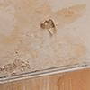 天井にシミがあるイメージ写真